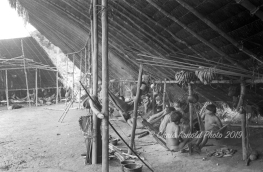 Communal hut, home to 100 people